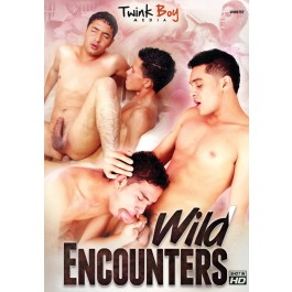 wild_encounters_front